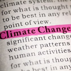 Climate change highlighted on a page